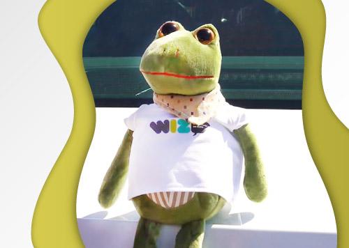 wiz žaba, iščemo ime